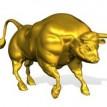 Toro dorado