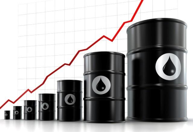 Barriles petroleo precio alza