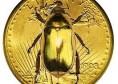 Moneda de oro con escarbajo de oro - Goldbug
