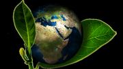 Planeta medio ambiente