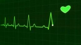 latidos corazon