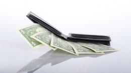 Monedero con dolares