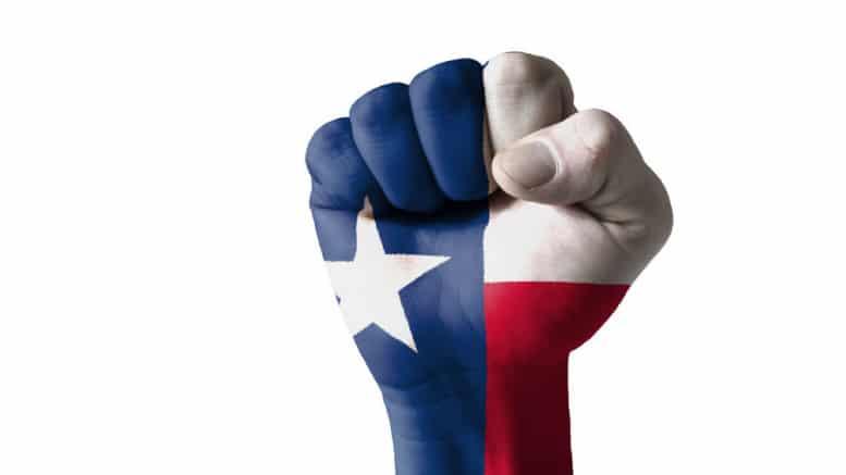 Bandera de Texas en puño